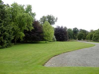 grand lawn