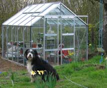Rion greenhouse in my garden