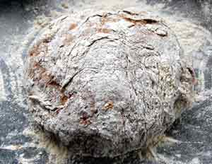 rye flour dough ready for kneading