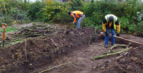 hugelkultur filling the trench