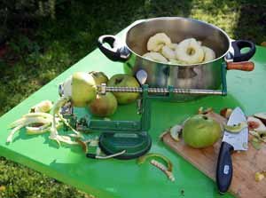 an apple corer, slicer and peeler