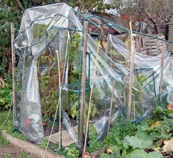 flexible plastic greenhouse after wind