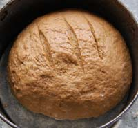 rye bread in the tin