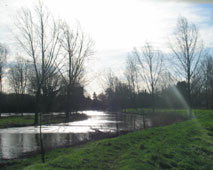 river close to bursting banks