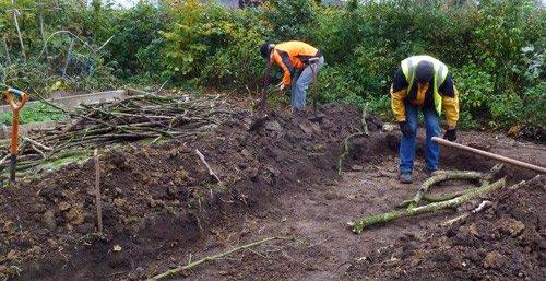 hugelkultur filling the trench